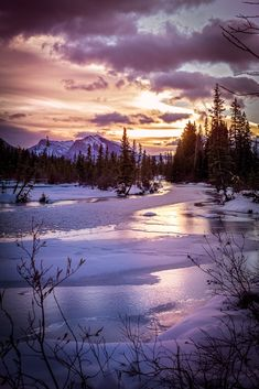 New Dawn by Policeman's Creek - Watching the sunrise by policeman's creek Canmore.