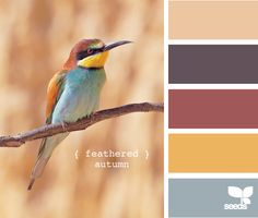 love this colour palette