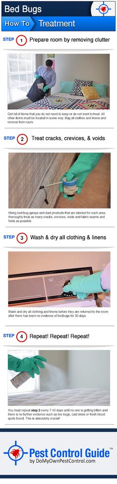 Learn how to get rid of bed bugs on your own with this easy to use bed bug treatment guide. Click the image for more in-depth information about doing your own bed bug treatment. You can also click here: http://www.domyownpestcontrol.com/how-to-get-rid-of-bed-bugs-a-449.html