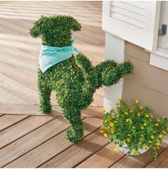 Funny dog topiary