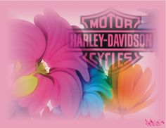 Harley Davidson Logo Desktop Wallpaper | Harley-Davidson fleurs logo rose - harley davidson, flower, fleurs ...