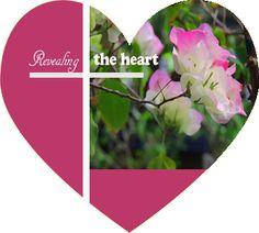http://revealtheheart.blogspot.com/