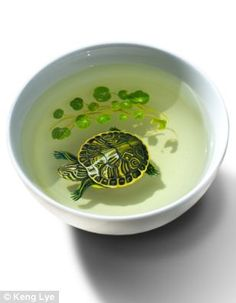 Turtle / Artist-creates-stunning-3D-paintings-fish-using-layers-paint-resin