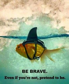 Just do it! Be brave.