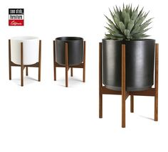 Amazing outdoor or indoor planters. Ceramic with wood stand. Beautiful