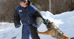 Dog Protective Eyewear • $79.95 • In Stock #PoliceK9s #servicedogs #protectiondog #guarddog #militarydog #rexspecs #rexspecsk9 #canine #eyewear #aviation #rescuedog