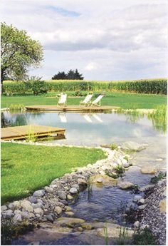 The Natural Pool - poolen Swimming Pool Pond, Natural Swimming Ponds, Natural Pond, Pond Landscaping, Ponds Backyard, Backyard Projects, Outdoor Projects, Garden Features, Water Features