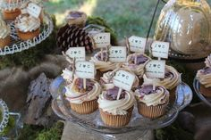 Rustic Wedding Cupcake Toppers, etsy