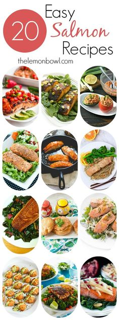 A list of twenty healthy and easy salmon recipes for you to try.