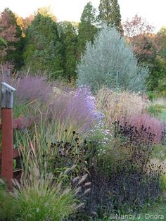 A garden border at Hayefield in fall (autumn) with the foliage (leaves) and seedheads of perennials and ornamental grasses; includes a birdhouse and fence [Nancy J. Prairie Garden, Garden Cottage, Gravel Garden, Garden Grass, Meadow Garden, Herbs Garden, Australian Garden, Ornamental Grasses, Landscaping Plants