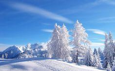 Winter ish - Cocoknits