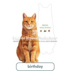 """PaperHouse Productions Red Tabby Cat Birthday Card by PaperHouse Productions Red Tabby Cat Birthday Card. $5.99. Featuring fun & iconic images, Paper House Greeted Cut-Out Cards connect with customers on a personal level. With a unique greeting on the inside and fun facts and trivia on the back, our cards are perfect for personal expression. The individual cards are celloed with an envelope and have a footprint of 4.4x7.3"""" for easy display."""