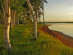 PEI National Park, Canada  pic credit National Post Life