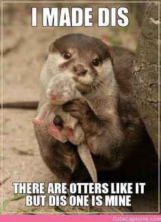 Love this!  Too Cute!