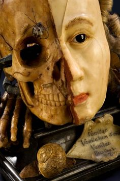 A Wax Vanitas, Europe, from the 1700's, is to remind people of the uselessness of vanity & the certainty of death.