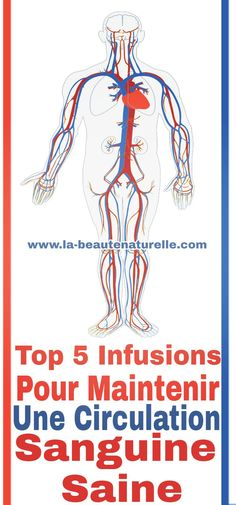 Top 5 infusions pour maintenir une circulation sanguine saine  #circulation #sanguine Valeur Nutritive, Circulation Sanguine, Tops, Drink, Circulatory System, Take Care Of Yourself, Natural Medicine, Weight Loss Plans