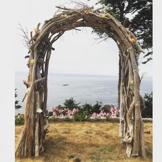 My wedding arbor made from driftwood found on the Oregon coast. If you think you can't. YOU CAN!