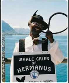 The Whale Crier of Hermanus