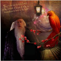 Albus Dumbledore by harrypottersets on Polyvore featuring art