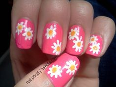 daisies this week :)