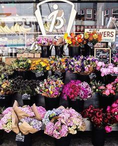 """Bi-Rite Market San Francisco CA  Photo de @zoey_b  Share the love visitez sa galerie! ------------------------------------------- Rejoignez la communauté et tagguez vos photos #francaisauxusa pour être """"featured"""" et n'oubliez pas d'indiquer le  lieu  ! -------------------------------------------- #francaisauxusa #françaisauxusa #frenchexpat #frenchintheusa #usa #voyageusa #discoverusa #travelusa #travelamerica #amerique #exploreusa #bestofusa #neverstopexploring  #sanfrancisco #bayarea #sf…"""
