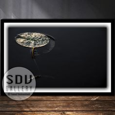 Downloadable abstract, digital photo, printable wall art dream, leaf, river, sunlight, water, spring, forest, reflection, Vienna, Austria Spring Forest, Leaf Photography, Vienna Austria, Photo Tree, Landscape Photos, Nature Photos, Printable Wall Art, Sunlight, Reflection