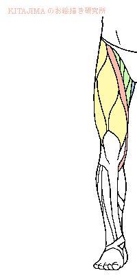 c036f5d5b7b12d16218fe0cd6068c107dd9b251248d1-7r..