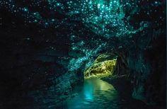 cavernas de Waitomo, na Nova Zelândia