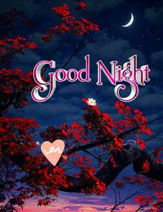 Good Night Images For Whatsapp Photos Of Good Night, Lovely Good Night, Beautiful Good Night Images, Good Night Prayer, Good Night Blessings, Good Night Gif, Night Pictures, Good Night Sweet Dreams, Good Night Quotes