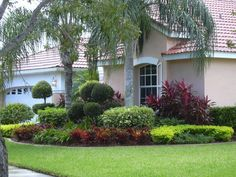Nice Outdoor Home Design With Natural Front Yard Landscape Ideas: Green Grass With Small Plants And Palm Trees For Nice Front Yard Landscape Ideas