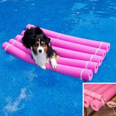 Crafty Water Raft Those colorful foam pool toys are useful all around the house and with a few tweaks, can be even MORE fun in the water. Check out these tips for using your noodles at home, in the garage, around the yard and at the pool! Above Ground Pool, In Ground Pools, Swim Noodles, Pool Hacks, Cool Pools, Pool Landscaping, Rafting, Swimming Pools, Shih Tzu