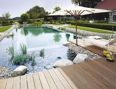 Natural Swimming Pools: Here's a great example of a conventional pool turned into a natural swimming pond. They offer a much lower maintenance alternative to conven. Swimming Pool Pond, Natural Swimming Ponds, Natural Pond, Swimming Pool Designs, Pool Spa, Amazing Swimming Pools, Swimming Holes, Natural Stones, Ideas De Piscina
