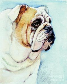 British Bulldog Painting by Morgan Fitzsimons - British Bulldog Fine Art Prints and Posters for Sale
