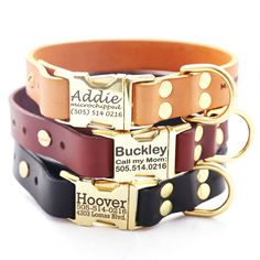Classic Personalized Leather Dog Collar with Brass Buckle -- 3 colors to choose from by shopmimigreen on Etsy https://www.etsy.com/listing/170914740/classic-personalized-leather-dog-collar