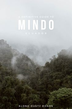 Hidden in the cloud forests of Ecuador is a little town called Mindo - the perfect spot to to watch birds, chase waterfalls and even get your adrenaline hit. Things to do in Mindo Bolivia Travel, Brazil Travel, Peru Travel, Nature Photography Tips, Ocean Photography, Travel Photography, Wedding Photography, Portrait Photography, Mindo Ecuador