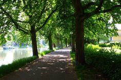 Danube cycle path - Ulm, Germany