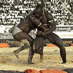 Traditional Senegalese wrestling takes its roots from the Serer people who used it as a preparatory exercise for war among the warrior classes. Now it has become a national sport in Senegal and some parts of Gambia. African Tribes, African Diaspora, African Art, African History, African Style, Aikido, Muay Thai, Grand Tour, Karate