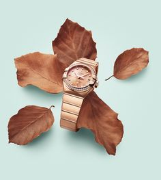 Omega Constellation / product pictures