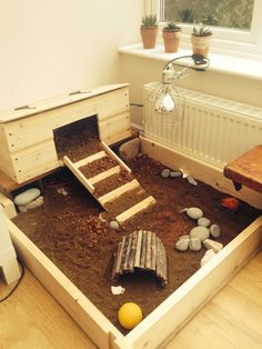 Tortoise Habitat table for Herb the Horsfield Russian