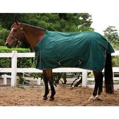 Medium Weight Turnout Blanket: Navy with Red Trim: 81 inch by Kensington. $99.99