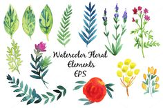 Vector watercolor flowers and leaves by alexandra.dzh on Creative Market