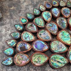 BRAND NEW!! Say hello to our Brand New Abalone Tear Drop Plugs! these are absolutely stunning! 20mm-50mm. GO GET THEM!! www.ukcustomplugs.co.uk #plug #plugs #gauges #teardrop #abalone #ukcp #ukcplugs #ukcustomplugs