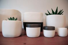 Spotted SF / Dogpatch / Tina Frey Designs