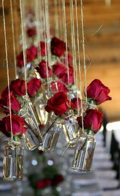hanging roses..