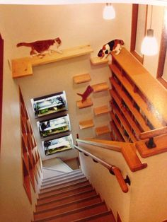 treppe bepflanzen cat ideas pinterest treppe katzen und katzentreppe. Black Bedroom Furniture Sets. Home Design Ideas