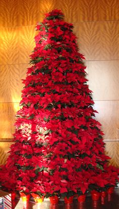 Make a  Poinsettia Christmas Tree~