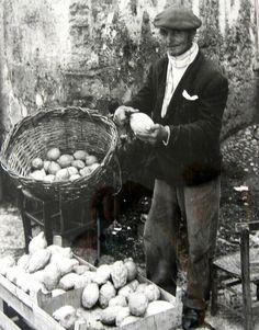 """1948 - come eravamo - venditore di cedro - 'u pipitunaru - il cedro: dolce e profumato agrume di Sicilia si chiama """"pipituni"""" e si mangia a fette con il sale - figura mitica al Papireto di Palermo: lo vendeva sbucciato, tagliato a spicchi e con un pizzico di sale #TuscanyAgriturismoGiratola"""