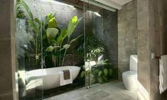 Outdoor Bathrooms, Dream Bathrooms, Beautiful Bathrooms, Modern Bathroom, Small Bathroom, Bathroom Ideas, Bathroom Organization, Balinese Bathroom, Minimal Bathroom