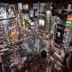 Traveling through Japan from Tokyo, Kyoto, and Osaka, including stays in Shinjuku and Harajuku Go To Japan, Visit Japan, Japan Japan, Japan Trip, Okinawa Japan, Hachiko Statue, Cyclades Greece, Japon Tokyo, Shibuya Tokyo