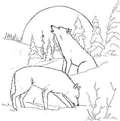 a00d52e279b e8c048b0fc4d animal coloring pages coloring pages for adults